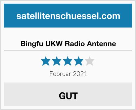 Bingfu UKW Radio Antenne Test